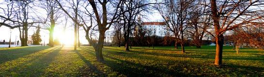 bratislava slott Arkivbilder