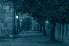Bratislava slottport på natten Royaltyfri Bild