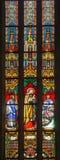BRATISLAVA, SLOWAKEI - 14. JANUAR 2014: Heiliges hauptsächlicher Charles Borromeo auf Fensterscheibe von 19 cent Stockbilder