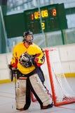 Bratislava, Slowakei, 11.-14. November 2010: der Weltcup des 1. Meisters in der Straße u. im Ball-Hockey stockfotos