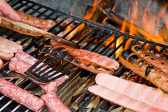 Brats Royalty Free Stock Images