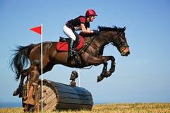 Braune, die über einen Fasssprung an der Pferdeshow ausdehnt Lizenzfreie Stockbilder