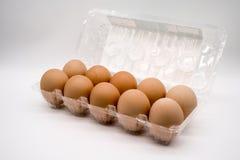 10 braune Eier Lizenzfreies Stockbild