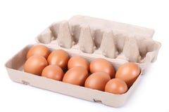 10 braune Eier in einem Kartonpaket Stockbilder
