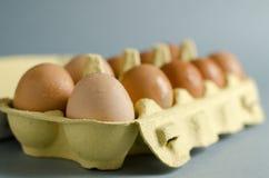 12 braune Eier im gelben Eierkarton Lizenzfreie Stockfotos