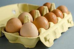 12 braune Eier im gelben Eierkarton Lizenzfreies Stockfoto