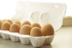 Braune Farbe der Hühnereien in der Schaumverpackung Stockfoto