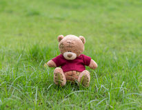 Braune Farbe des TEDDYBÄREN mit dem roten Hemd, das auf Gras sitzt Lizenzfreie Stockfotografie