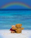 Braune Farbe von zwei TEDDYBÄREN, die auf dem schönen Strand mit r sitzt Lizenzfreie Stockbilder