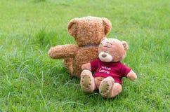 Braune Farbe von zwei TEDDYBÄREN, die auf Gras sitzt Lizenzfreie Stockbilder