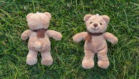 Braune Farbe von zwei TEDDYBÄREN mit Schal Lizenzfreie Stockfotos