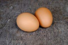 Braune Hühnereien der Nahaufnahme zwei Stockfoto