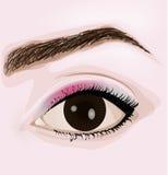 Braunes Auge der Frau mit Make-up Lizenzfreies Stockbild