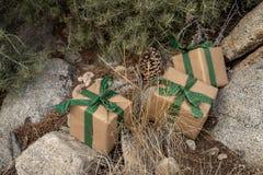 Braunes einwickelndes Papier des rustikalen Weihnachtsgeschenks, Weinlesegrünband, Kiefer stockbild