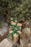 Braunes einwickelndes Papier des rustikalen Weihnachtsgeschenks, Weinlesegrünband, Kiefer stockbilder
