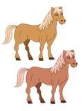 Braunes Pferd zwei Lizenzfreie Stockbilder