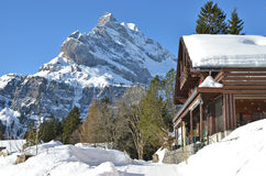 Braunwald, Швейцария Стоковое Изображение
