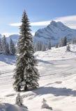 Braunwald, Svizzera Immagini Stock Libere da Diritti