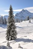 Braunwald, Switzerland Royalty Free Stock Images