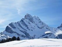 Braunwald, Switzerland Fotografia de Stock