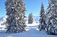 Braunwald, Switzerland Stock Image