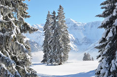 Braunwald, Switzerland Royalty Free Stock Photo