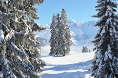 Braunwald, Switzerland Royalty Free Stock Photography