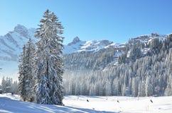 Braunwald, Switzerland Royalty Free Stock Image