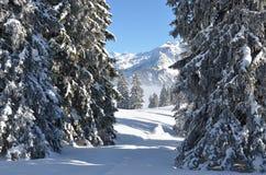 Braunwald, Switzerland Stock Photography