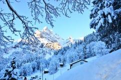 Braunwald w Szwajcaria Śnieżnych Bożenarodzeniowych górach Obrazy Royalty Free