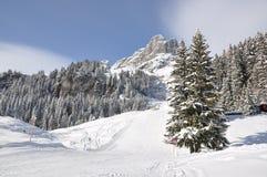 Braunwald, Zwitserland Stock Afbeelding