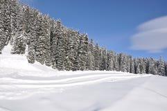 Braunwald, Zwitserland Royalty-vrije Stock Foto's