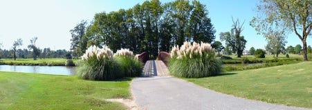 Braut über See auf Golfplatz Lizenzfreie Stockbilder