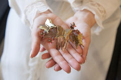 Braut übergibt das Halten eines Stückes der Haarverzierung mit Schmetterlingen Lizenzfreie Stockfotos