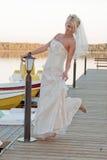 Braut auf dem See Stockbild
