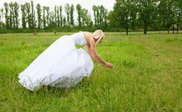 Braut auf einer grünen Wiese Lizenzfreies Stockbild