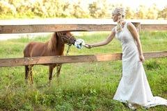 Braut auf Natur Stockfotografie