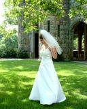 Braut auf Rasen Stockbilder