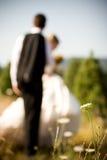 Braut-Bräutigam und Blume Lizenzfreie Stockfotografie