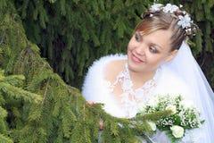 Braut, die Bräutigam sucht Stockfotografie