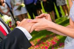 Braut, die einen Hochzeitsring auf Finger des Bräutigams setzt Stockbild