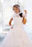 Braut in einem Schleier stockfotografie