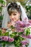 Braut in einem weißen Kleid auf einem lila Hintergrund im Frühjahr Lizenzfreies Stockfoto