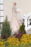 Braut im Garten Stockbild