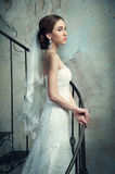 Braut im Hochzeits-Kleid und dem Schleier Stockfotos