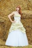 Braut im Hochzeitskleid auf einem Gebiet Stockfotografie