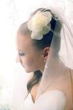 Braut im Schleier Stockfoto
