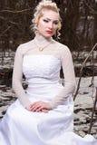 Braut im Winterwald Stockbild