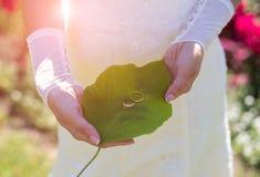 Braut mit Eheringen am sonnigen Tag lizenzfreie stockfotografie