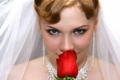 Braut mit einer Rose Lizenzfreies Stockbild
